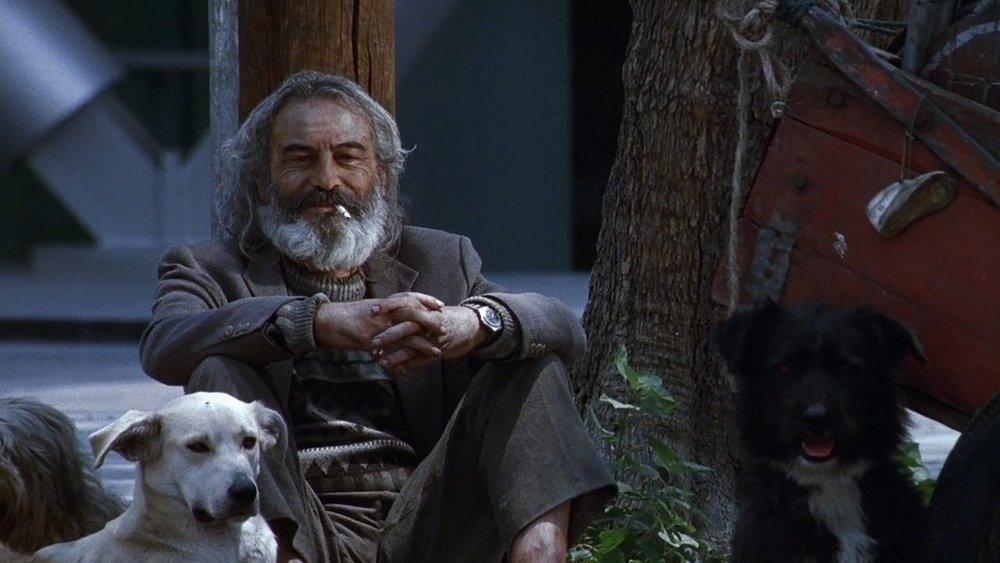 <em>Amores perros</em>: <br/>The Confinement of a Corporeal Existence